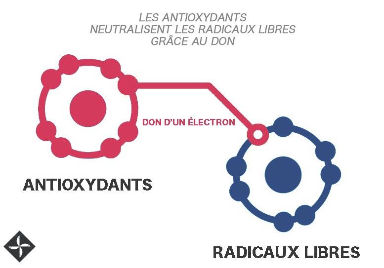 Crédit photo : authentico.fr